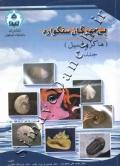 بی مهرگان سنگواره (ماکروفسیل) - جلد 1
