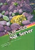 داده کاوی با SQL Server