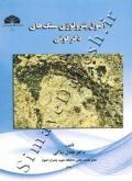 اصول پترولوژی سنگ های دگرگونی